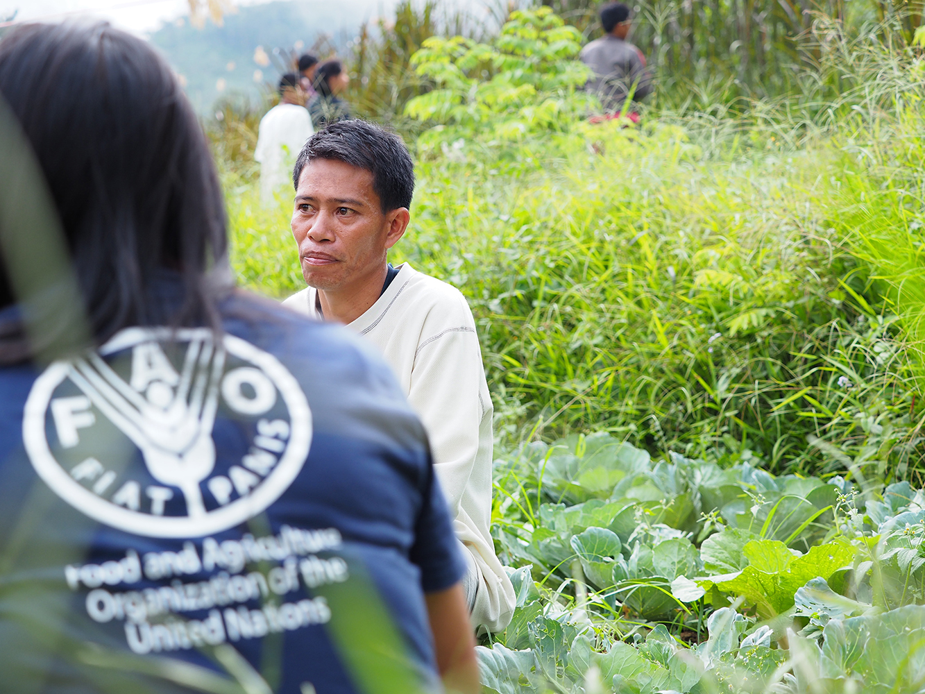 FAO-POST TYPHOON HAIYAN
